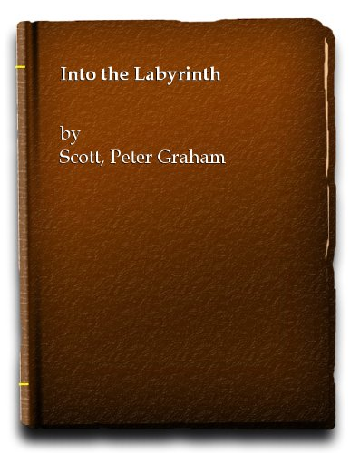 9780708820520: INTO THE LABYRINTH
