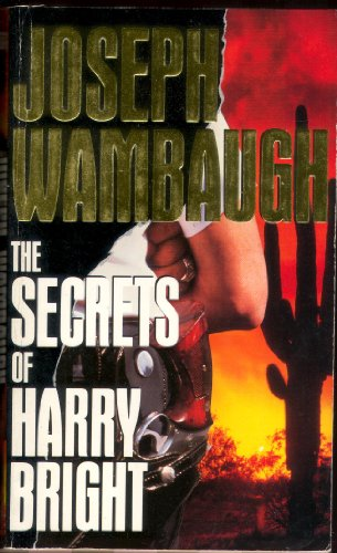 9780708883686: The Secrets of Harry Bright