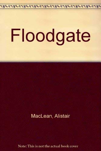 9780708912164: Floodgate (Ulverscroft large print)