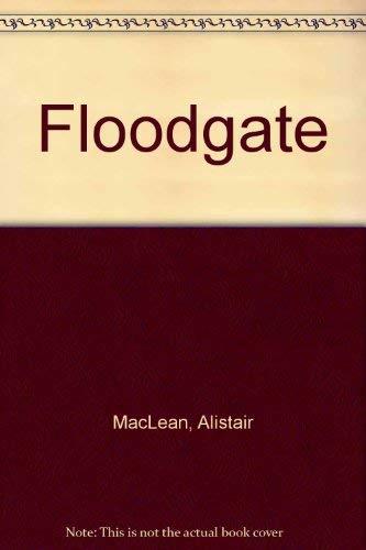 9780708912164: Floodgate