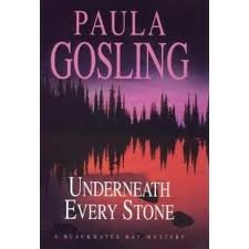 9780708943328: Underneath Every Stone