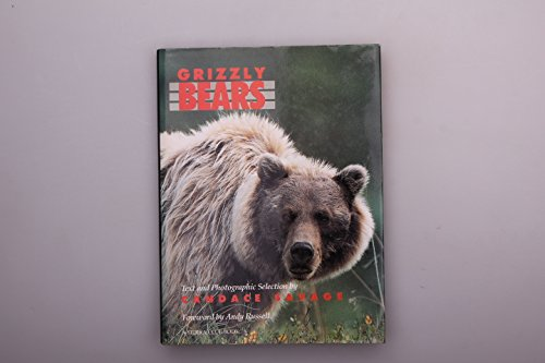 9780709042846: Grizzly Bears