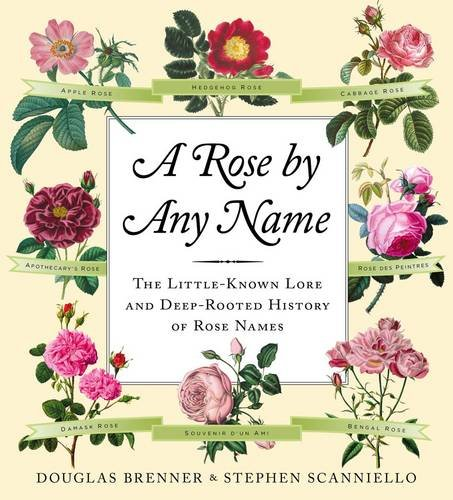 9780709090663: A Rose by Any Name
