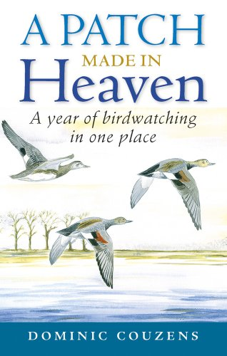 9780709091127: A Patch Made in Heaven: A Year of Birdwatching in One Place