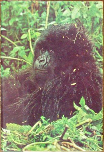 9780709161073: Up Among the Mountain Gorillas