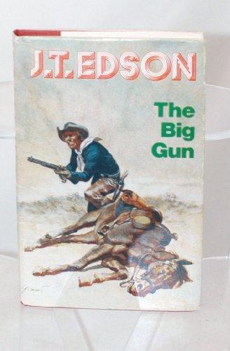 9780709182467: Big Gun