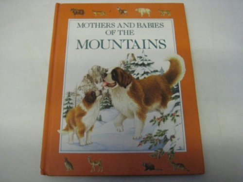 9780709706922: Red Riding Hood