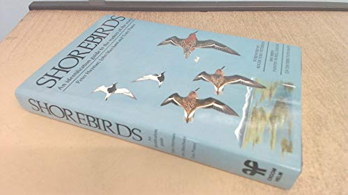9780709920342: Shore Birds: Identification Guide to Waders of the World