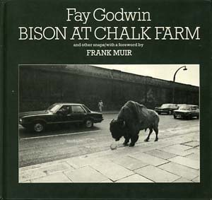 9780710093455: Bison at Chalk Farm and Other Snaps