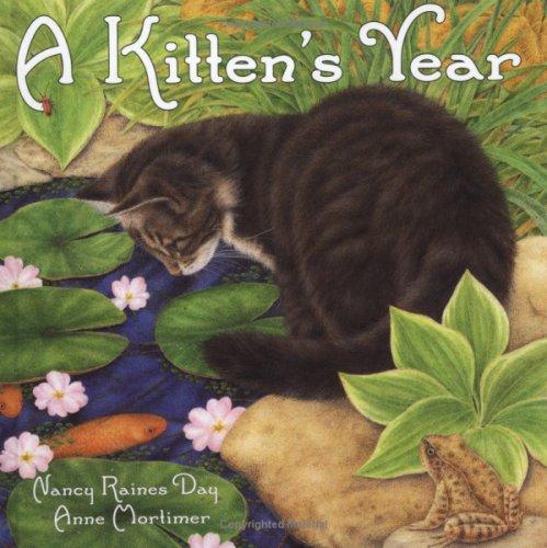 9780711215702: A Kitten's Year
