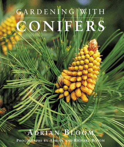 9780711217065: Gardening with Conifers