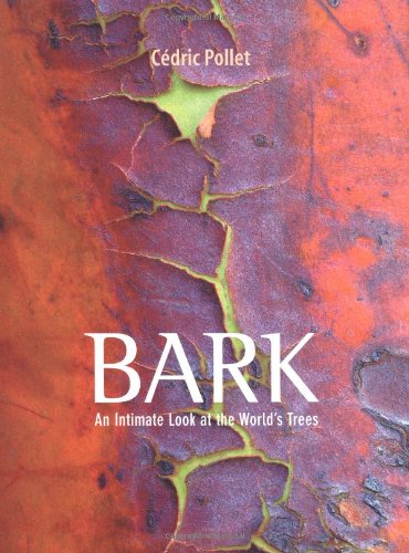 9780711231375: Bark: An Intimate Look at the World's Trees