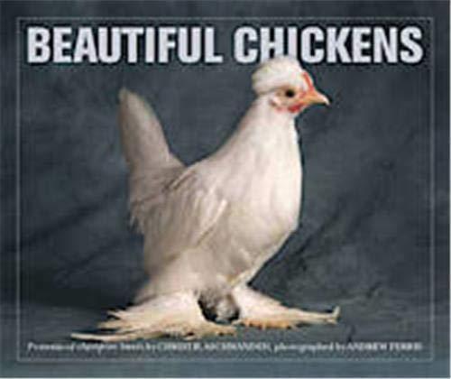 9780711231924: Beautiful Chickens