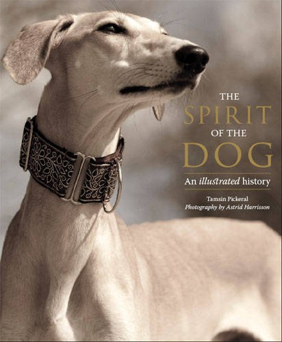 9780711233867: The Spirit of the Dog: An Illustrated History