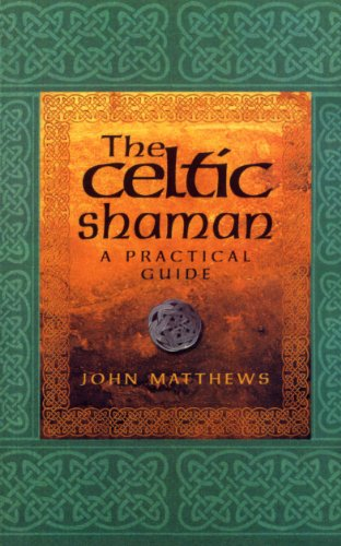 9780712614177: The Celtic Shaman (Practical Guide)