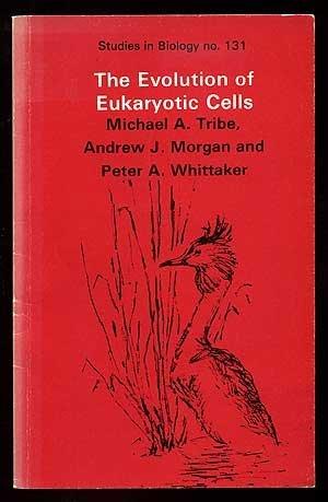 9780713128215: The Evolution of Eukaryotic Cells (Studies in Biology)