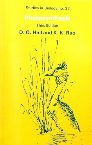 9780713128277: Photosynthesis (Studies in Biology)