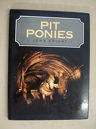 9780713452266: Pit Ponies
