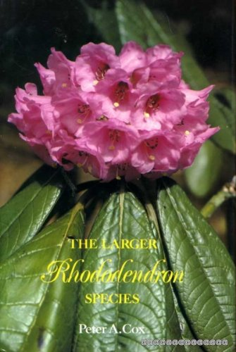 The Larger Rhododendron Species: Cox, Peter A.