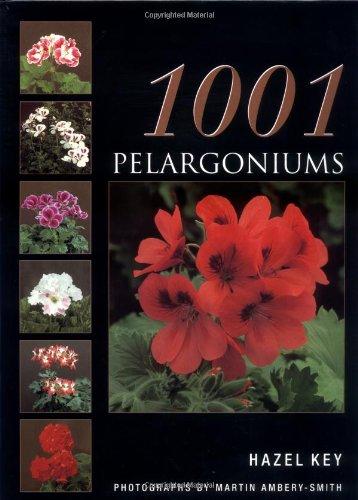 9780713482683: 1001 Pelargoniums