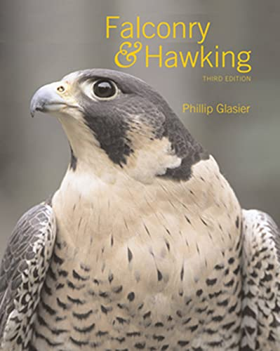 9780713484076: Falconry and Hawking