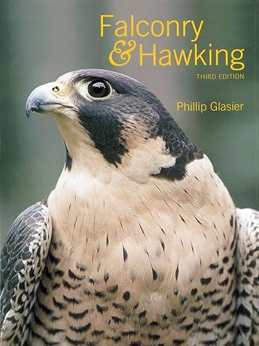 9780713484076: Falconry & Hawking