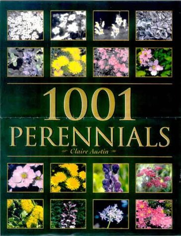 9780713484083: 1001 Perennials