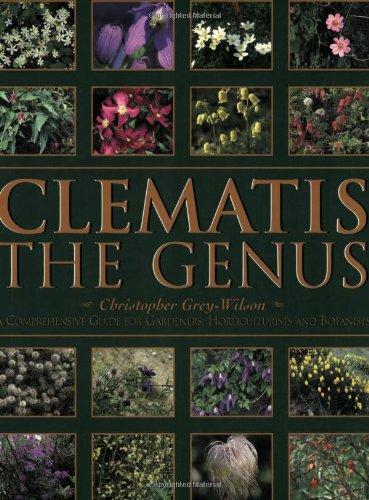 9780713487268: Clematis
