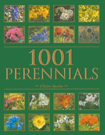 9780713488241: 1001 Perennials