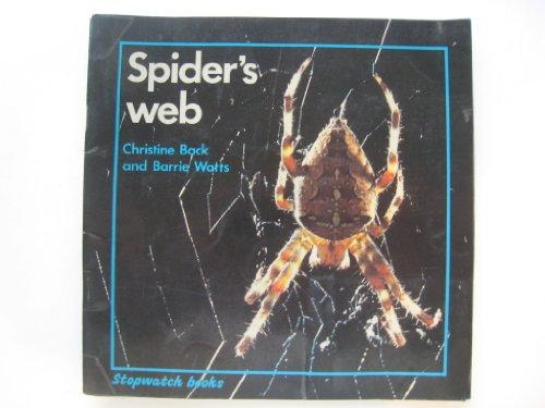 9780713634990: Spider's Web (Stopwatch Books)