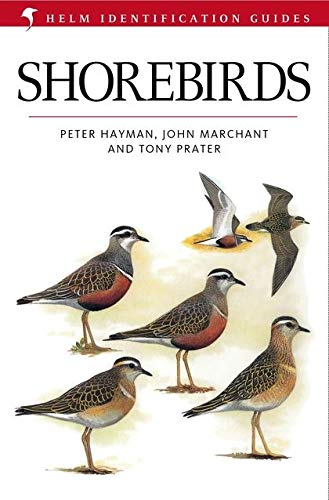 9780713635096: Shore Birds: Identification Guide to the Waders of the World (Helm Identification Guides)