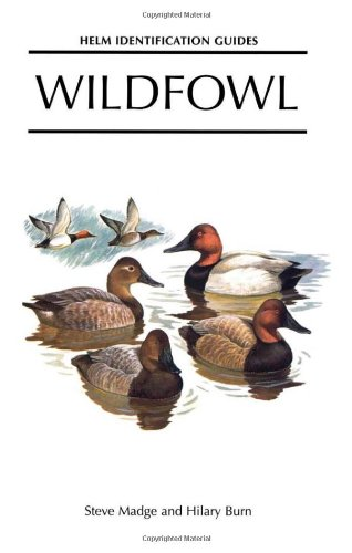 9780713636475: Wildfowl: An Identification Guide to the Ducks, Geese and Swans of the World (Helm Identification Guides)