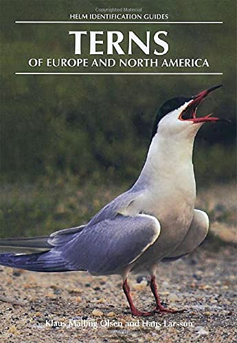9780713640564: Terns of Europe and North America (Helm Identification Guides)