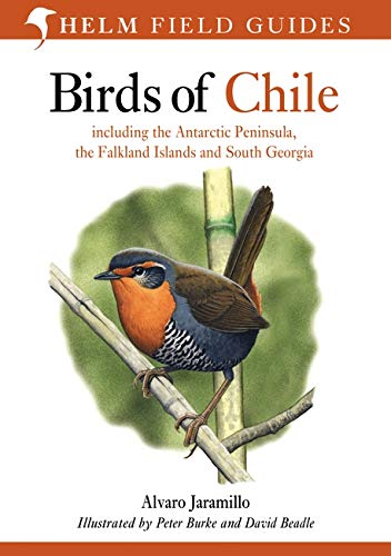 9780713646887: Birds of Chile: Including the Antartic Peninsular, the Falkland Islands and South Georgia (Helm Field Guides)