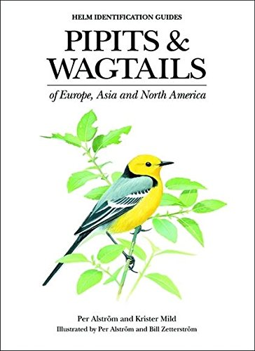 9780713658347: Pipits and Wagtails of Europe, Asia and North America: Identification and Systematics (Helm Identification Guides)