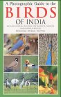 9780713664034: A Photographic Guide to the Birds of India: Including Nepal, Sri Lanka, the Maldives, Pakistan, Bangladesh and Bhutan (Helm Field Guides)