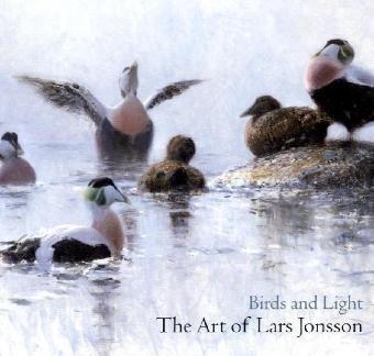 Birds and Light: The Art of Lars Jonsson (Hardback): Lars Jonsson