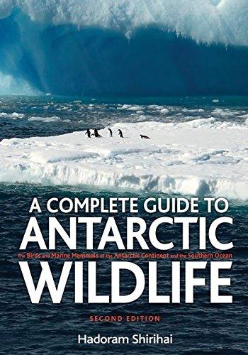 A Complete Guide to Antarctic Wildlife: Hadoram Shirihai