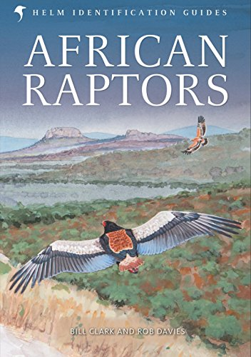 9780713665383: African Raptors (Helm Identification Guides)