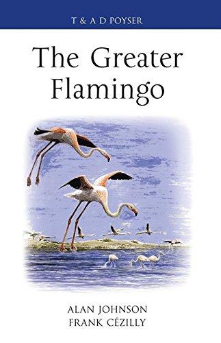 The Greater Flamingo (Hardback): Alan Johnson, Frank C. Cezilly