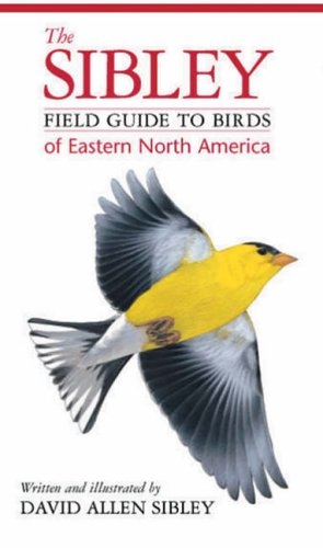 Sibley Field Guide Birds/East Nth Americ (Helm Field Guides): Sibley, David