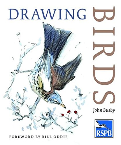 9780713668162: Drawing Birds (RSPB)