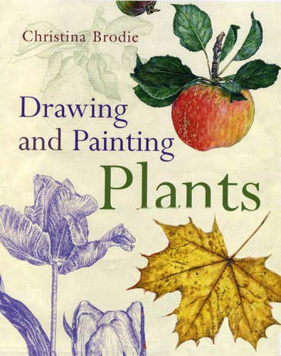 9780713668896: Drawing and Painting Plants
