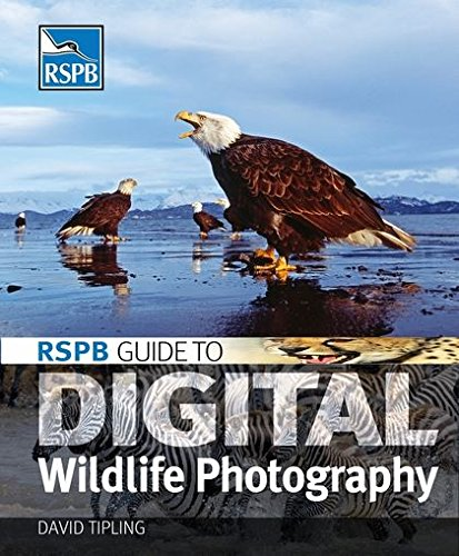 9780713671858: RSPB Guide to Digital Wildlife Photography