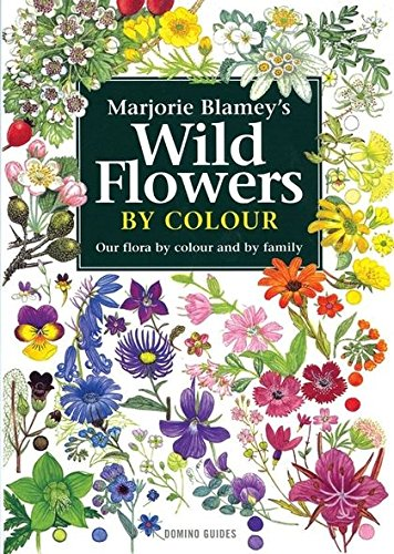 9780713672374: Wild Flowers by Colour: The Easy Way to Flower Identification