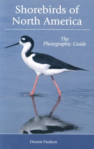 9780713673777: Shorebirds of North America: A Photographic Guide