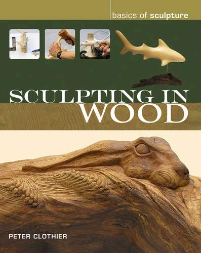 Sculpting in Wood (Basics of Sculpture): Clothier, Peter