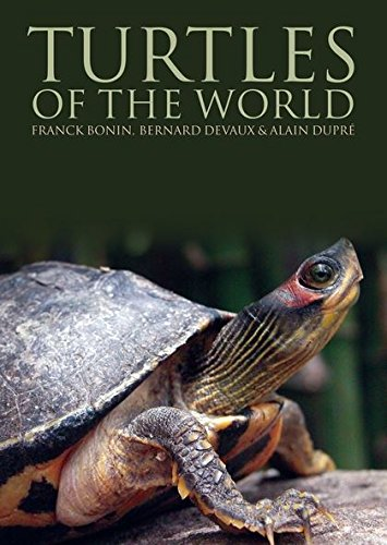 9780713682359: Turtles of the World