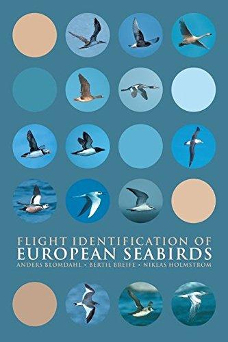 9780713686166: Flight Identification of European Seabirds (Helm Identification Guides)
