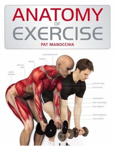 9780713687217: Anatomy of Exercise